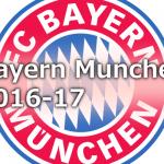 bayern-main